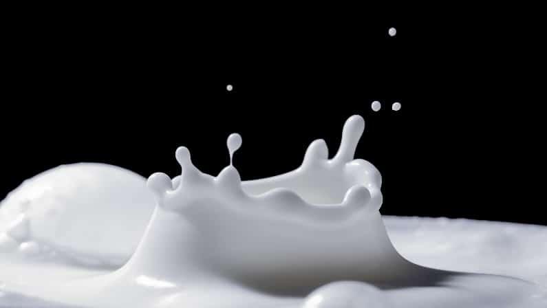 El paraíso de los lácteos